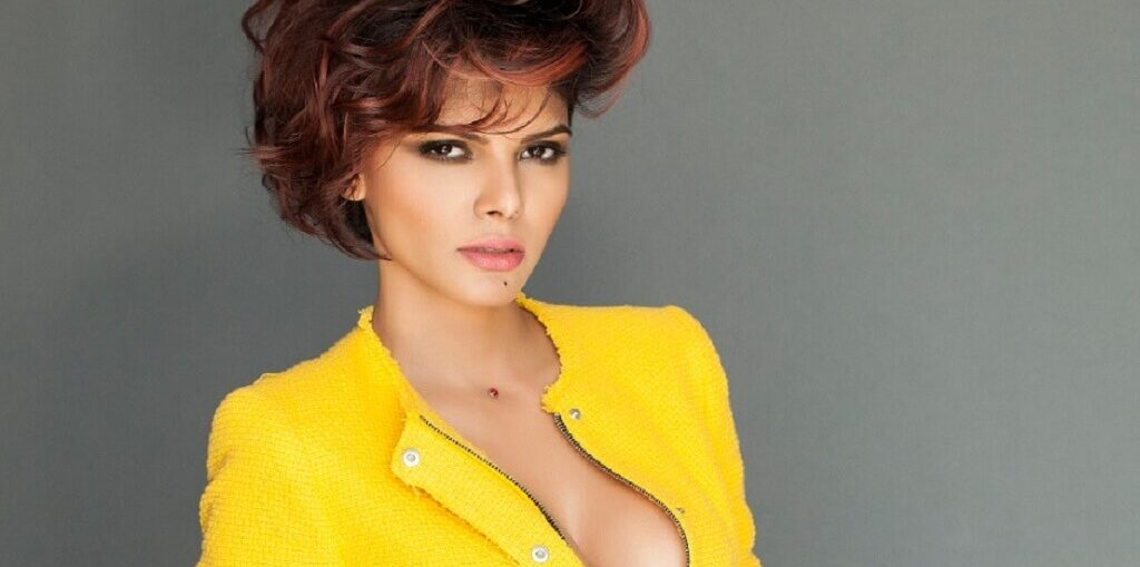 Sherlyn Chopra rap video on Independence Day